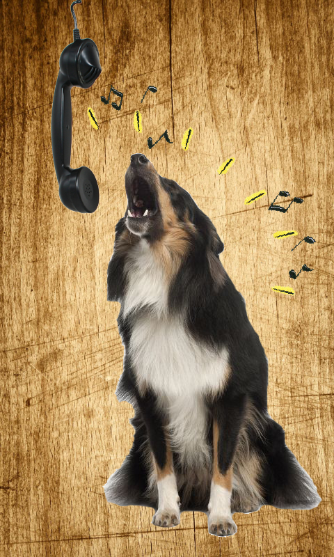 Amazon. Com: barking dog ringtones: appstore for android.