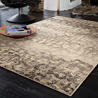 """product image for Orian Rugs Epiphany Buxton Bliss Lambswool Area Rug, 7'10"""" x 10'10"""", Beige"""