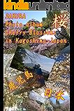 SAKURA Cherry Blossoms in Kagoshima-JAPAN (English Edition)