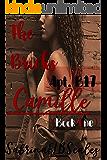 Apt B17: Camille (The Bricks Book One)