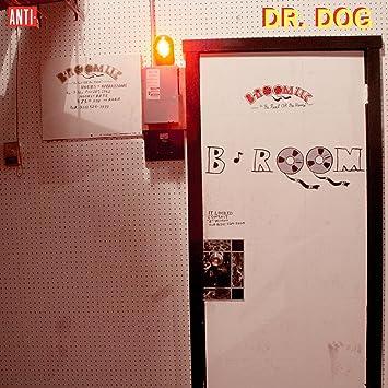 Image result for dr dog b room