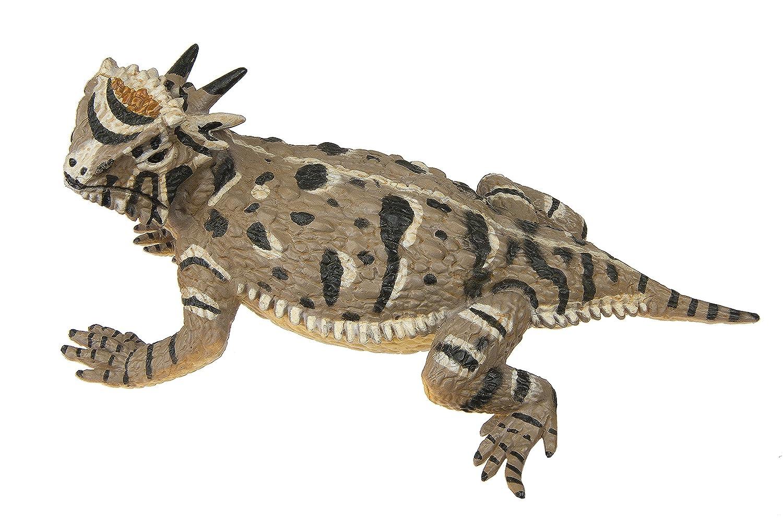 Safari Ltd Incredible Creatures gehörnten Eidechse: Amazon.de: Spielzeug