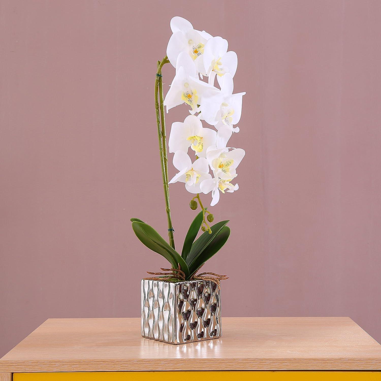 Alicemall Phalaenopsis Artificiel d'Orchidée en Pot de Céramique 22