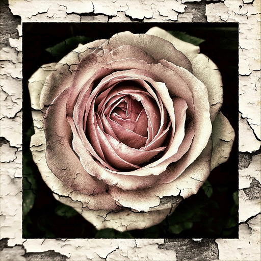 Lovely Love Photo Frames (Lovely Picture Of Love)