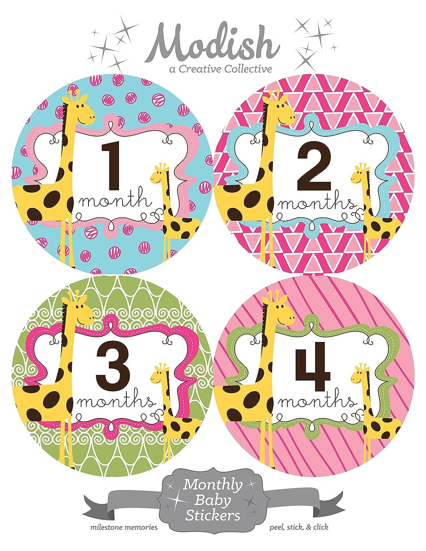 【超特価】 12 Stickers Monthly Baby Stickers, Girl Stickers, Giraffes, Girl, Baby Belly Stickers, Monthly Onesie Stickers, First Year Stickers Months 1-12, Pink, Blue, Green, Yellow, Giraffes, Baby Girl by Modish - Creative Collective B00XGZDU76, 築地めし友:168ec9e2 --- mvd.ee