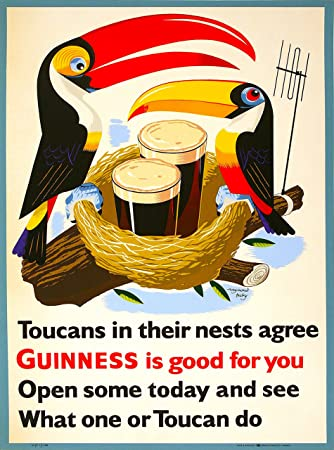 Amazon.com: My Goodness My Guinness Beer Toucan Dublin Ireland Great ...