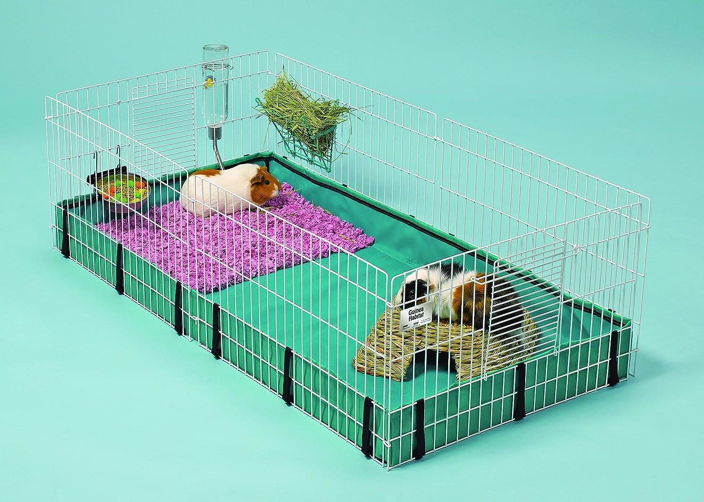 amazon com guinea habitat guinea habitat pet care products