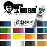 Bob Ross Set de peinture pour paysage avec 14 tubes de 37 ml