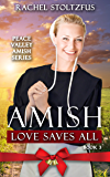 Amish Love Saves All (Peace Valley Amish Series Book 3) (English Edition)