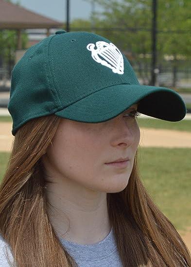 75db6fac884 Amazon.com   Irish Baseball Team Ireland Official Embroidered Green New Era  39Thirty Stretch Fit Cap - Small Medium   Sports   Outdoors