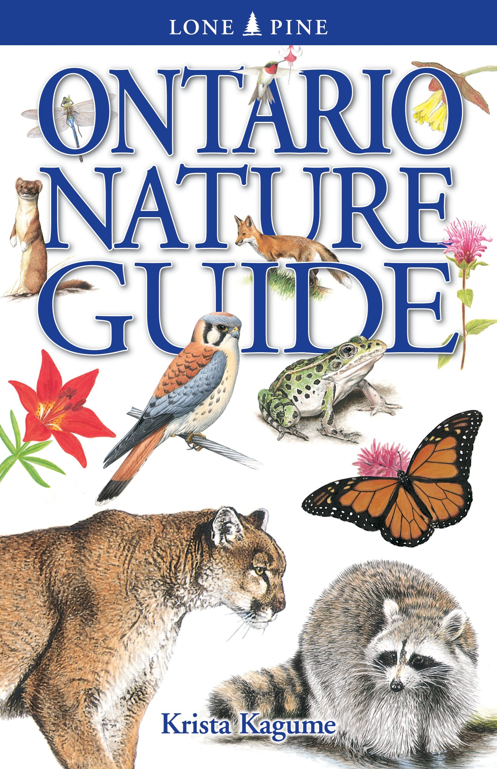 Read Online Ontario Nature Guide pdf