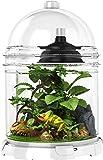 Bio-Bubble BioBubble Reptile Bundle, White