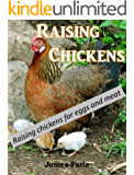 Chickens: Raising Chickens, Choosing The Best Chickens, Chicken Feeding & Care