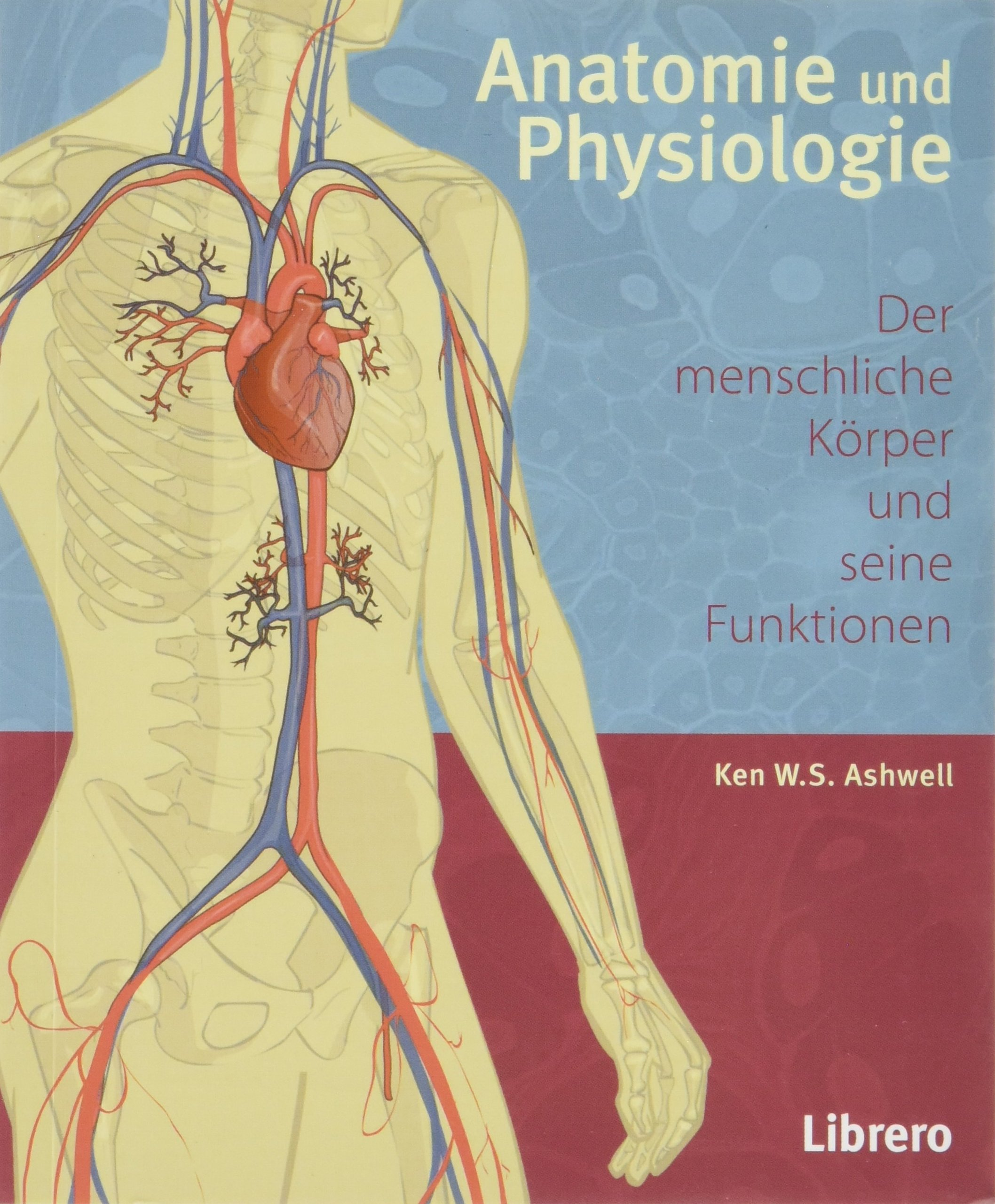 Anatomie und Physiologie: Amazon.de: Ken Ashwell: Bücher