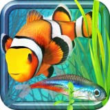 fish farm - Fish Farm 2