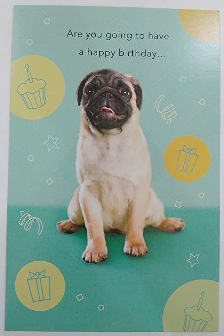 Amazon Pug Dog Funny Happy Birthday Greeting Card