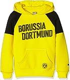 Puma Kinder Bvb Borussia Hoody Pullover