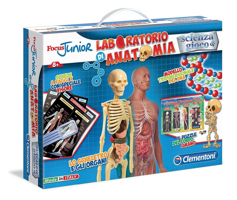 Clementoni 13946 - Laboratorio di Anatomia: Amazon.it: Giochi e ...