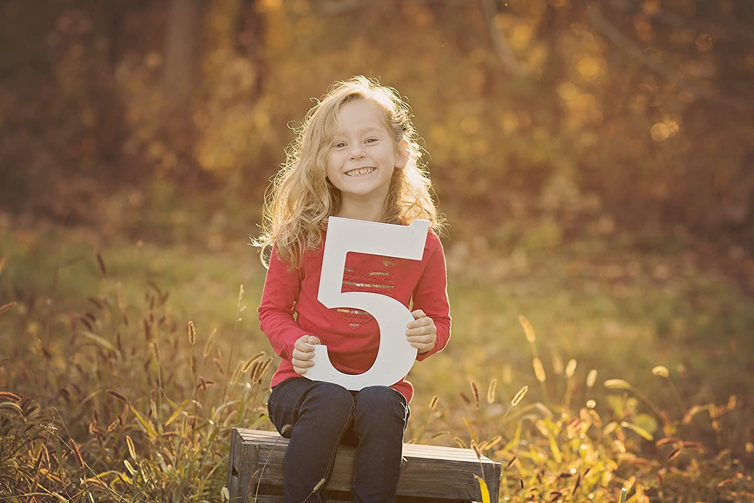 5 Sign Wooden Number Children's Photo Prop Five Kids Photography Prop Birthday Photo Shoot Prop Wooden Number Sign