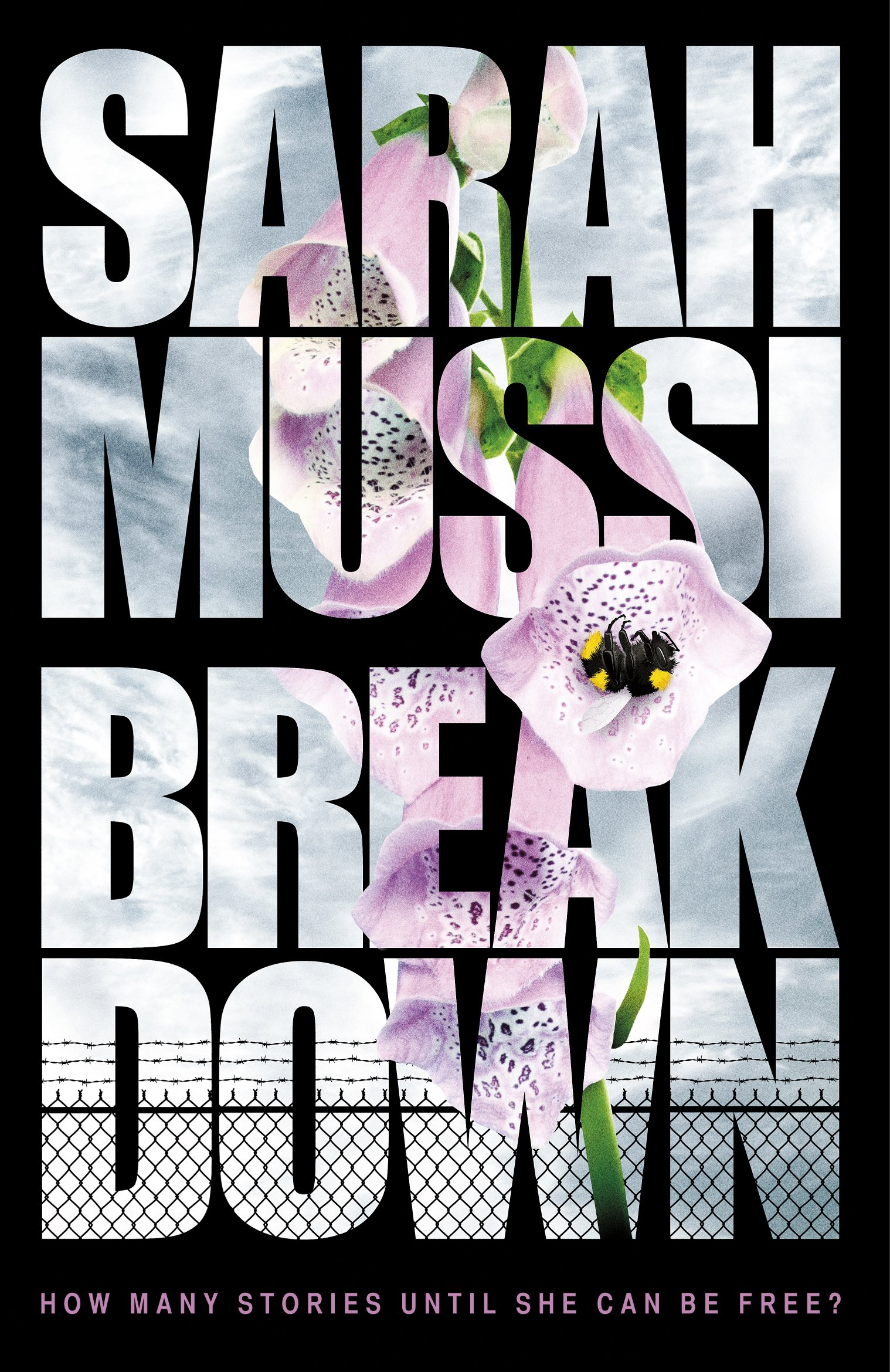 Image result for breakdown sarah mussi