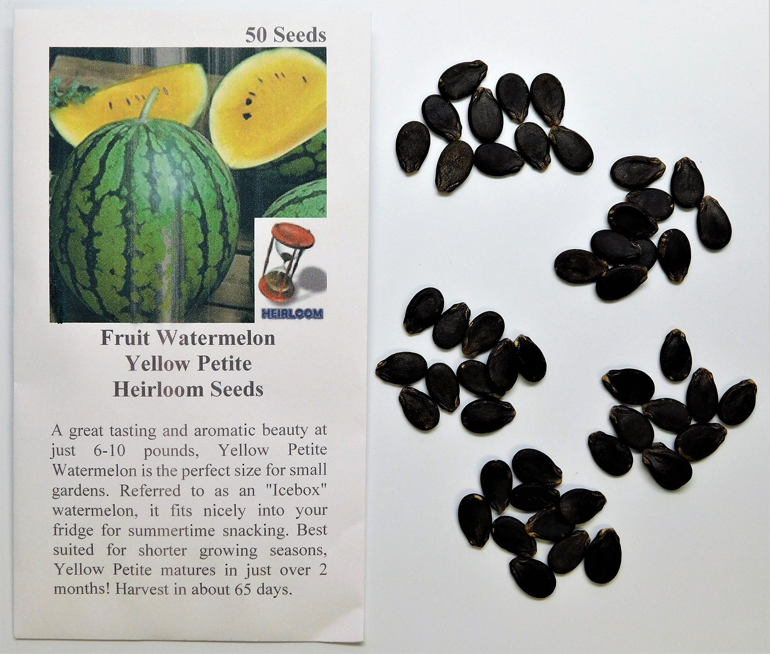 David's Garden Seeds Fruit Watermelon Yellow Petite PZ9812 (Yellow) 50 Heirloom Seeds