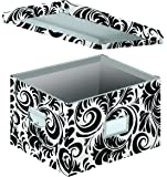 Snap-N-Store Letter and Legal File Box, Interior Dimensions 9.5 x 14.75 x 12.25 Inches, Black and White Scroll Design (SNS01835)