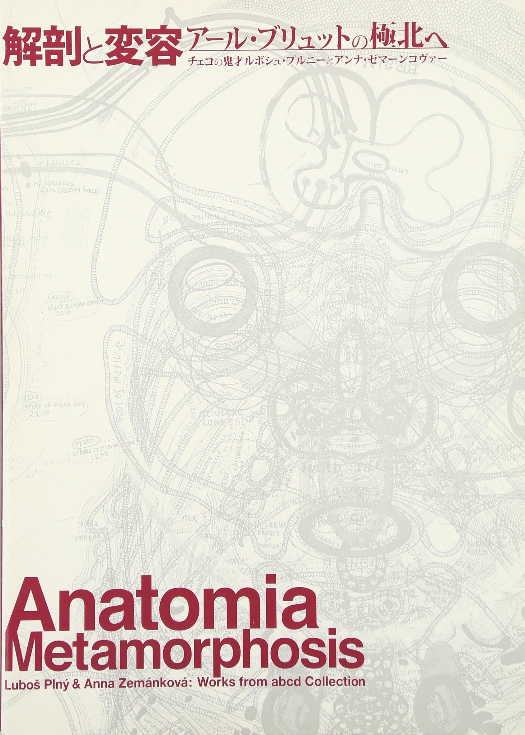 解剖と変容 アール・ブリュット...