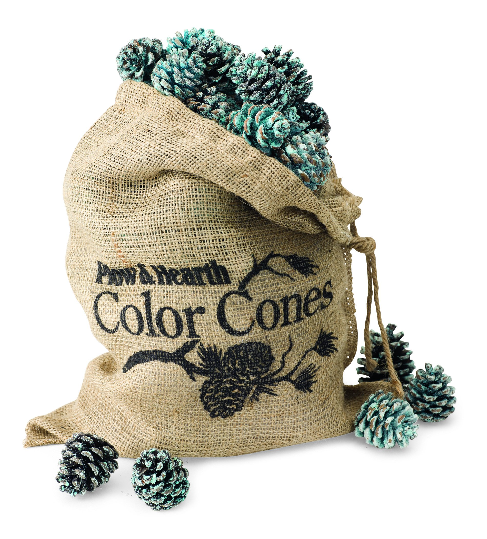 Plow & Hearth Fireplace Color Changing Pine Cones Wood Burning Accessories by Plow & Hearth