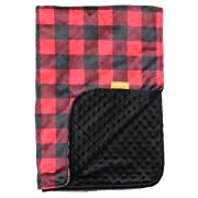 Dear Baby Gear Deluxe Baby Blankets, Custom Minky Print Red and Black Buffalo Plaid, Black Minky Dot