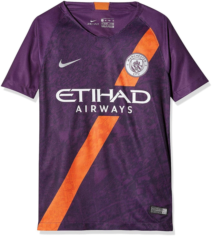 Nike Kinder Manchester City Fc Breathe Stadium 3rd T-Shirt