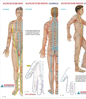 Buy Acupressure Chart - Points & Meridians Book Online at