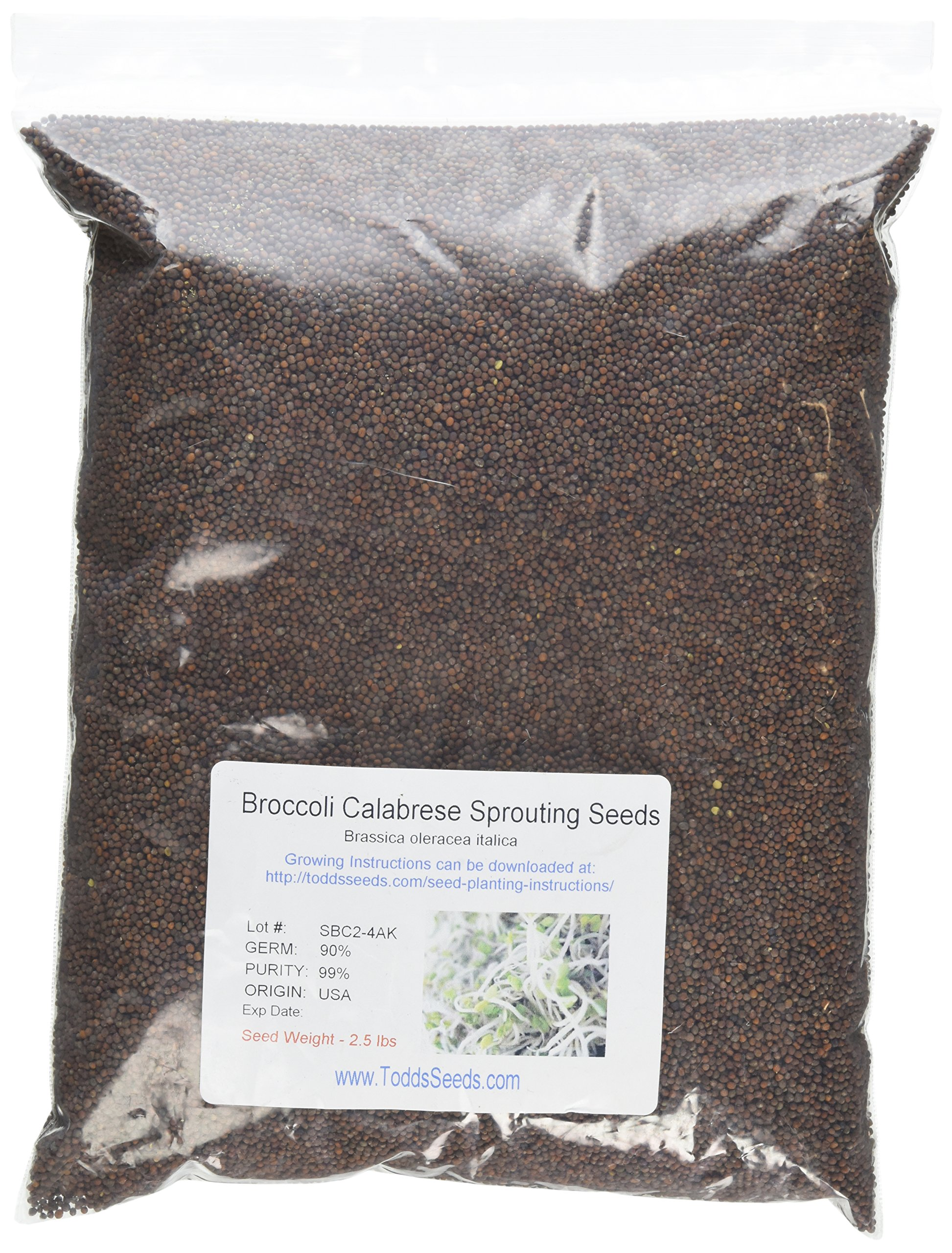 Broccoli Sprouting Seeds- Todd's Seeds Brand - 2.5 Lbs of Broccoli Seeds - Sprouting Sprouts, Chemical Free Sprouts & Food Storage- Brocolli Sprouts Contain the Most Sulforaphane by Todd's Seeds