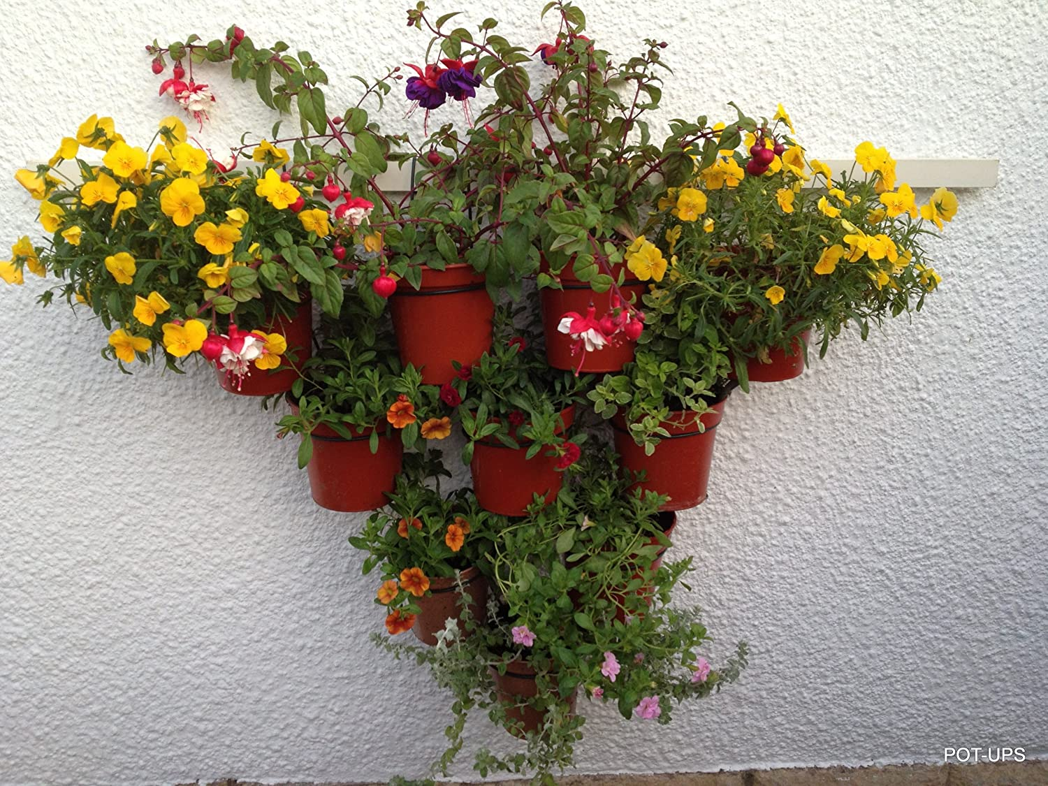 "Hang plants in 6/"" pots on a TRELLIS or Pallet.Plant pot rings,holders,hangers"