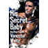 His Secret Baby  (Bad Boy Empire Book 2)