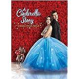 A Cinderella Story: Christmas Wish (DVD)
