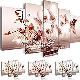 Quadro 200x100 cm - Tre colori da scegliere - 5 Parti - Grande Formato - Quadro su tela fliselina - Stampa in qualita fotografica - fiori acqua b-C-0082-b-o 200x100 cm B&D XXL