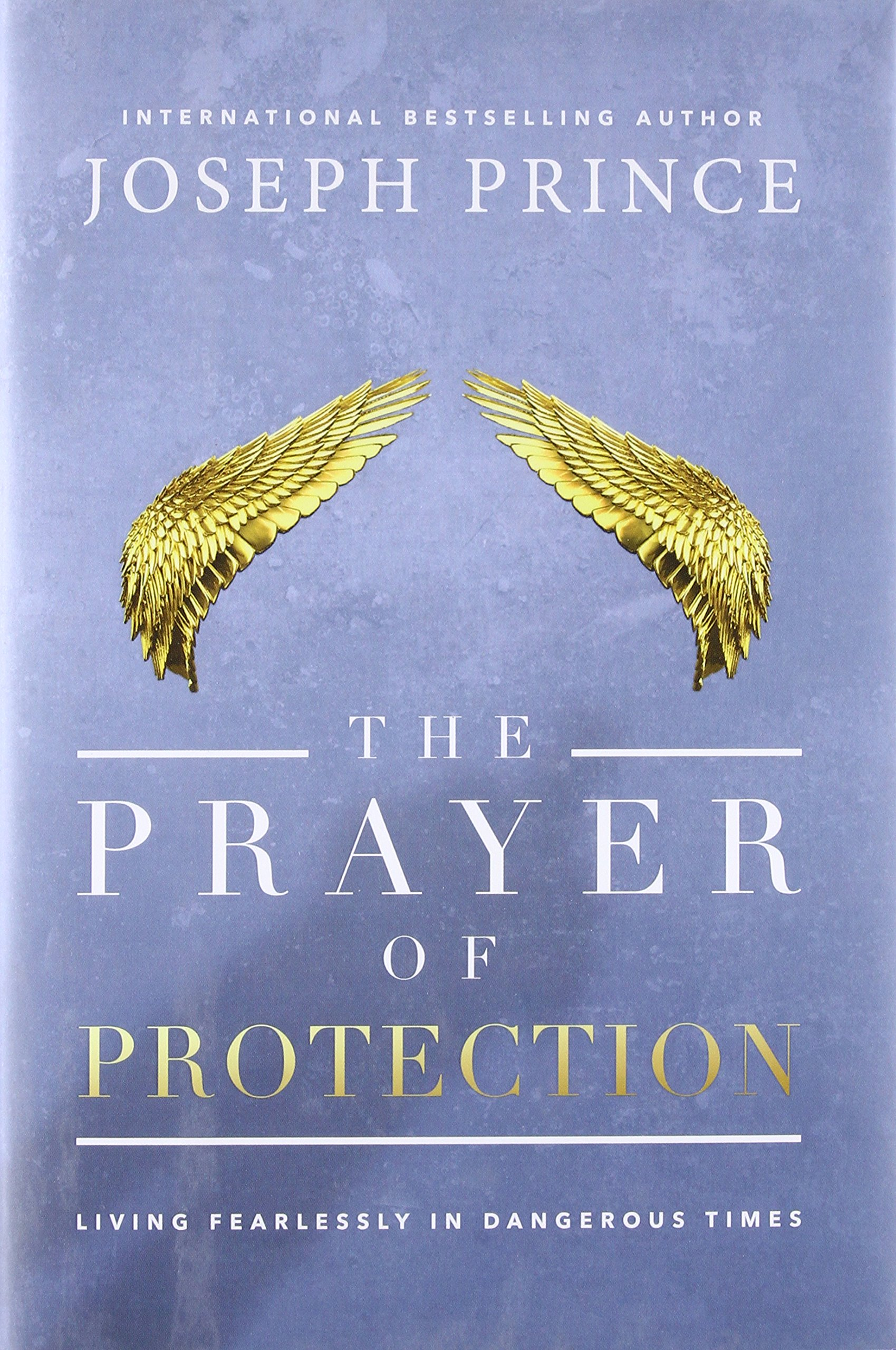 Download The Prayer of Protection: Living Fearlessly in Dangerous Times pdf
