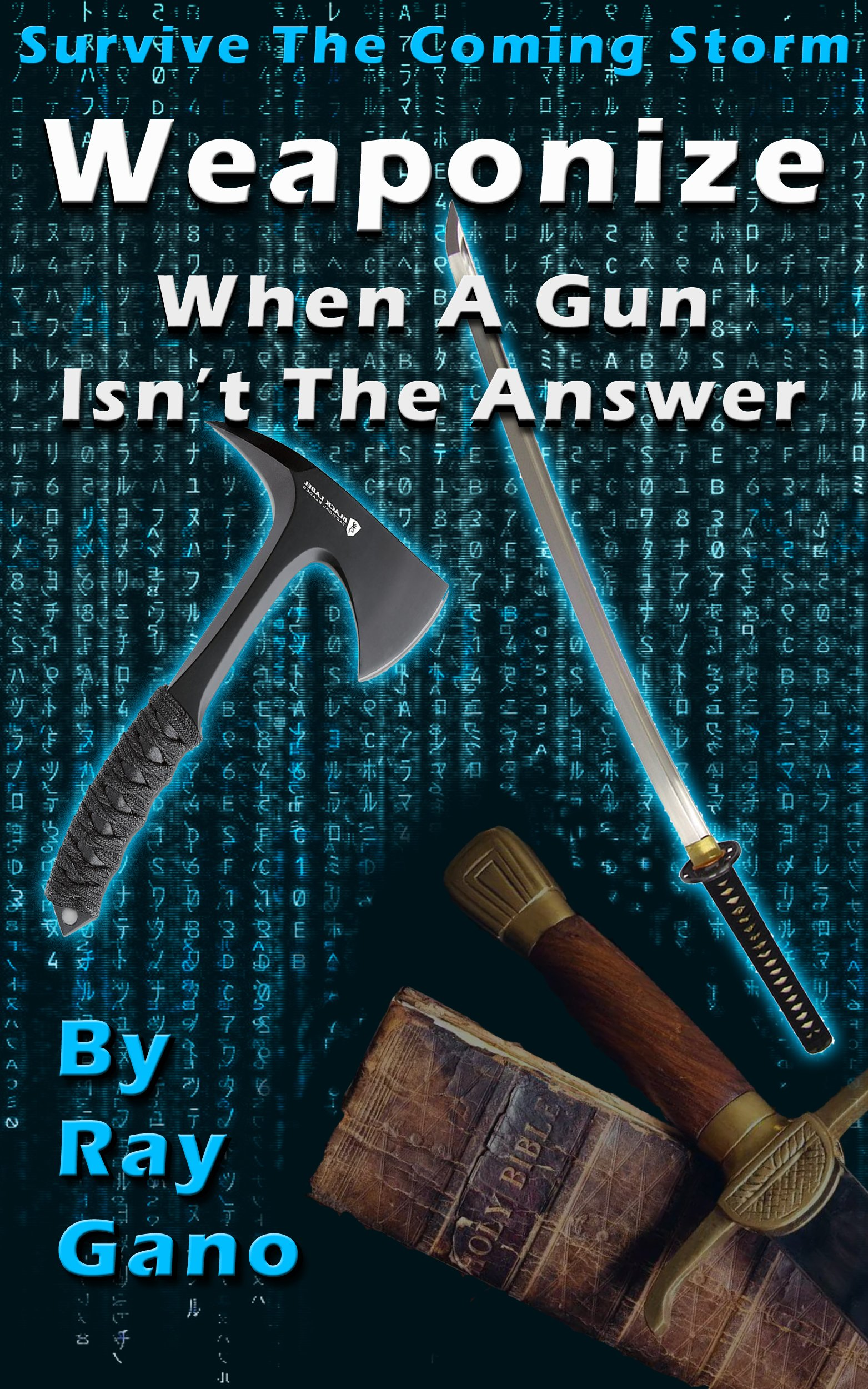 Survive The Coming Storm   Weaponize   When A Gun Isn't The Answer By Ray Gano  English Edition
