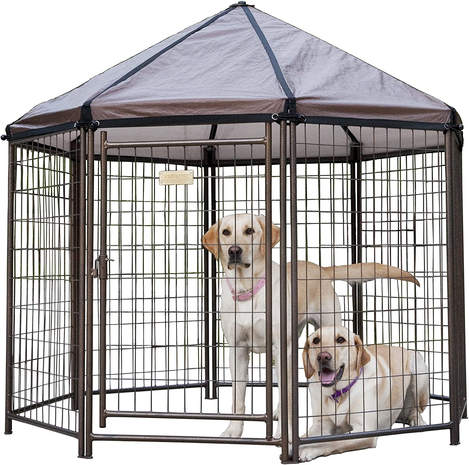 Amazon dog kennel makita ga5030r kaina