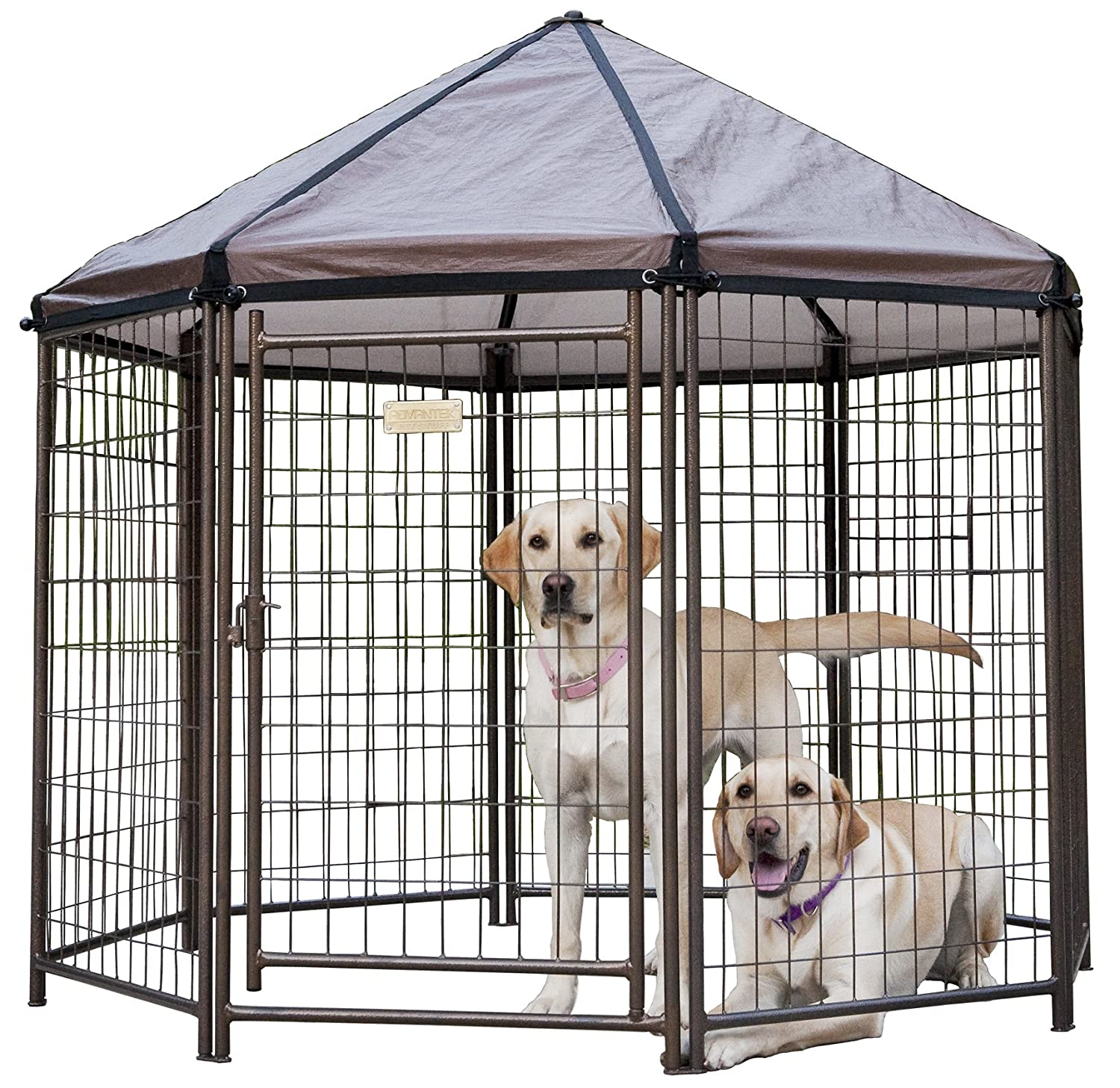 Advantek Pet Gazebo Modular Outdoor Dog Kennel