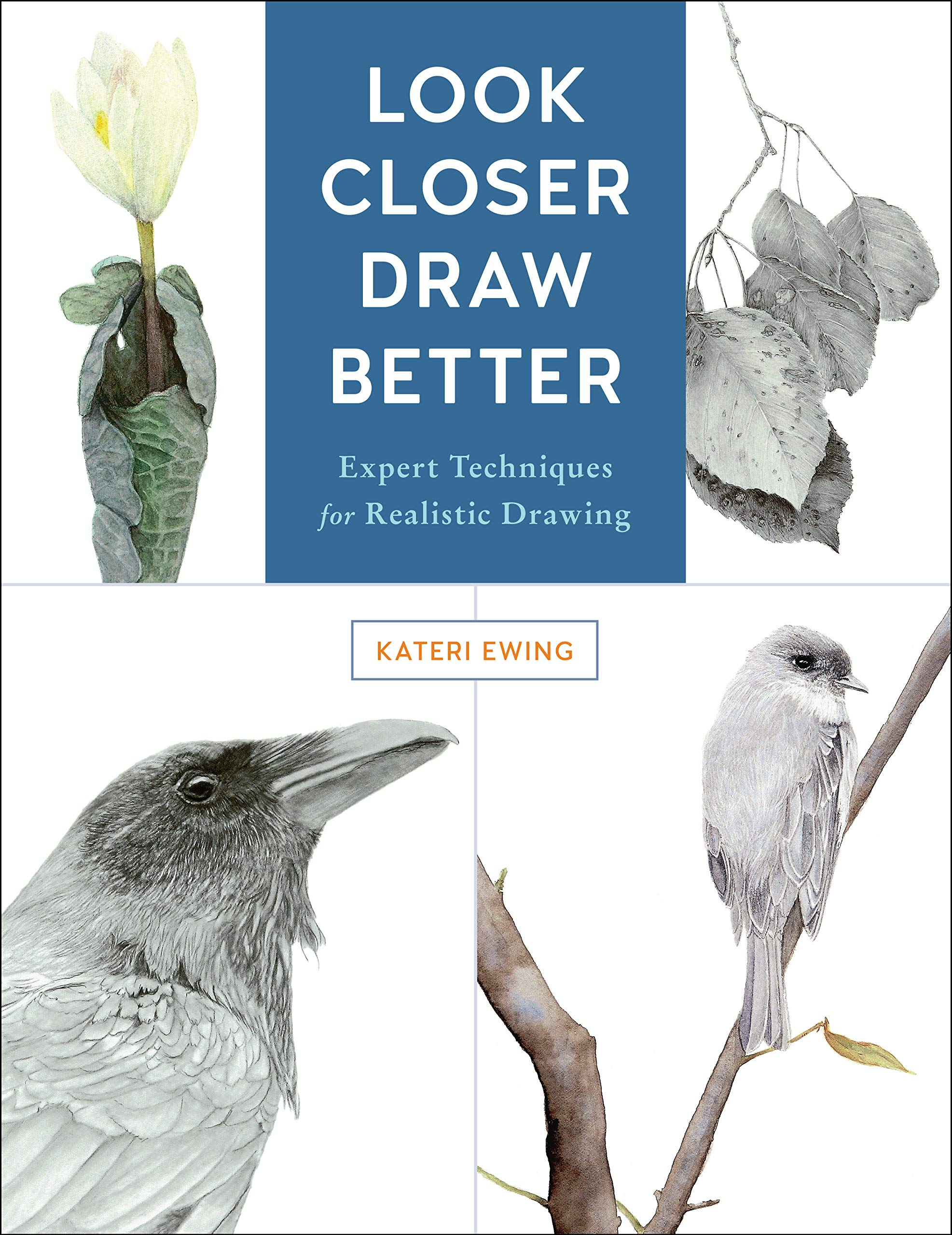 Amazoncom Look Closer Draw Better Expert Techniques For