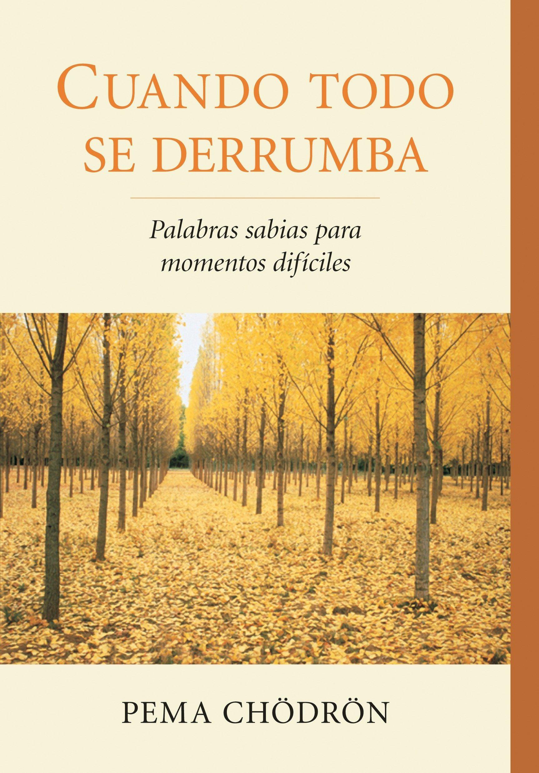 Read Online Cuando todo se derrumba (When Things Fall Apart): Palabras sabias para momentos dificiles (Spanish Edition) pdf epub
