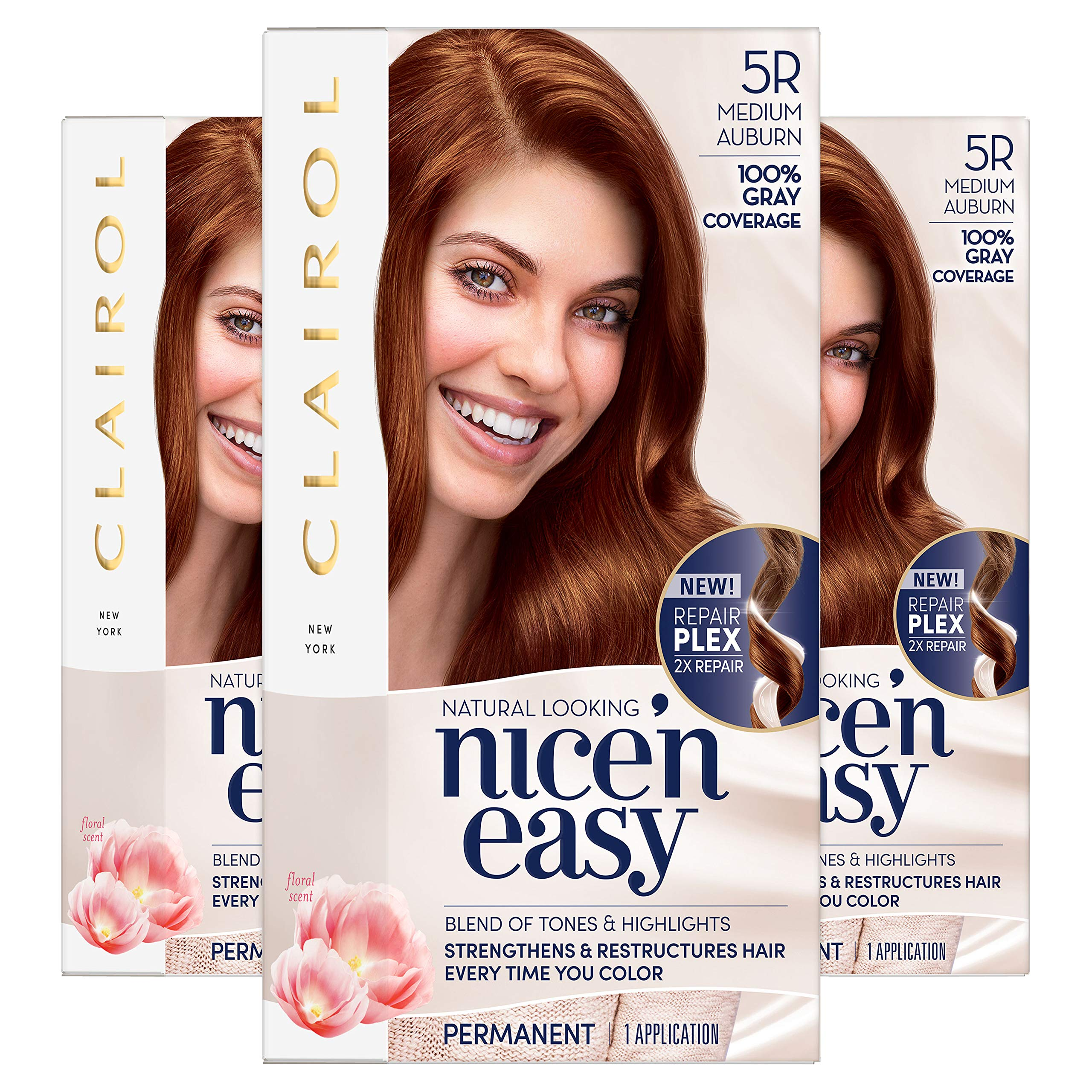 Amazon Com Clairol Nice N Easy Original 6r Natural Light