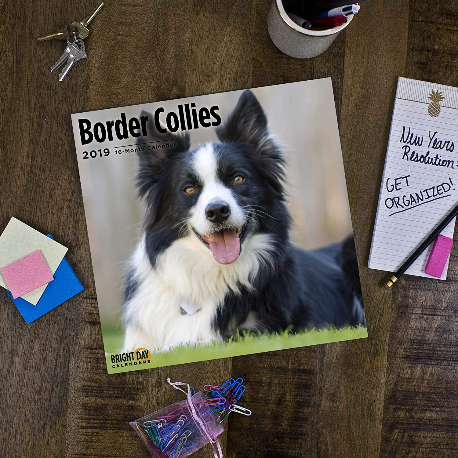amazoncom border collies 2019 16 month wall calendar 12 x 12 inches office products