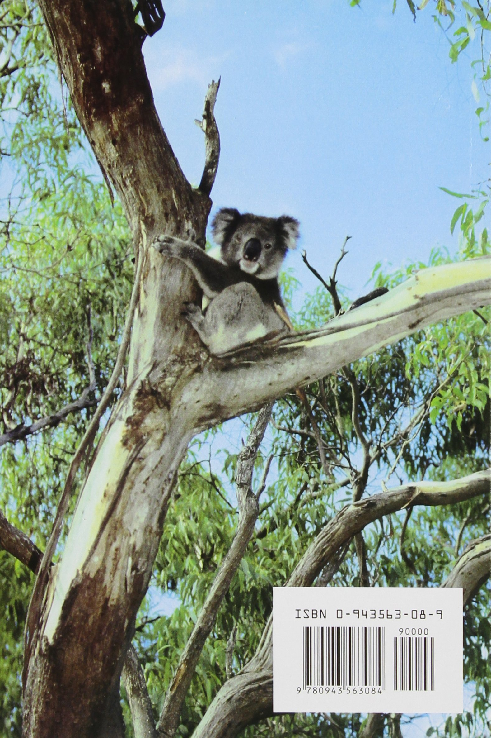 Tree Pruning: a Worldwide Photo Guide: Amazon.co.uk: Alex L. Shigo:  9780943563084: Books