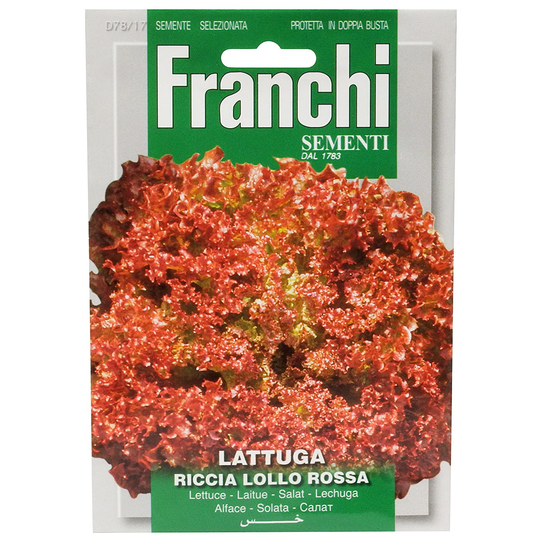Franchi Samen Salat Lollo Rossa, Rot Seeds of Italy Ltd 78/17
