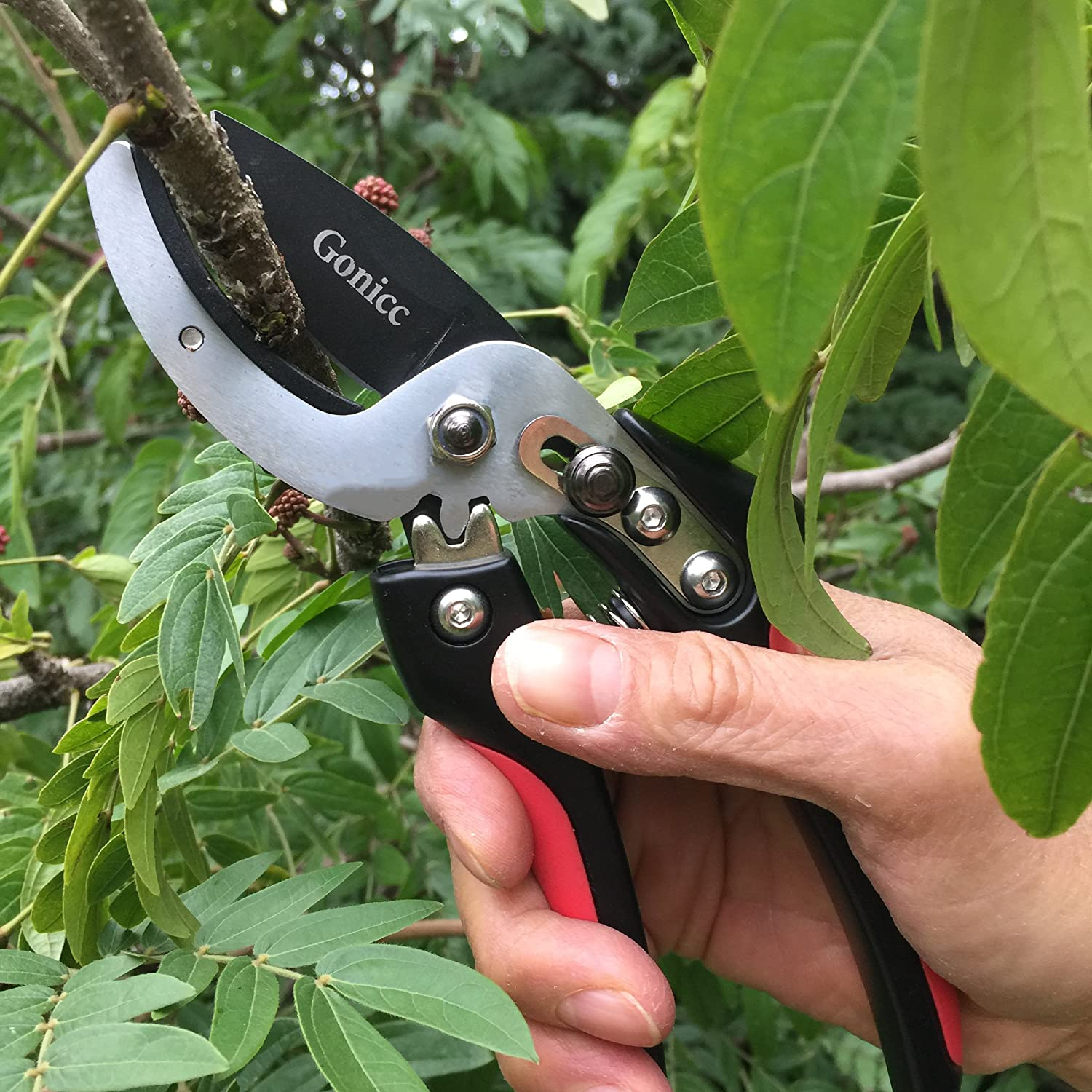 Gonicc Anvil Pruning Shears