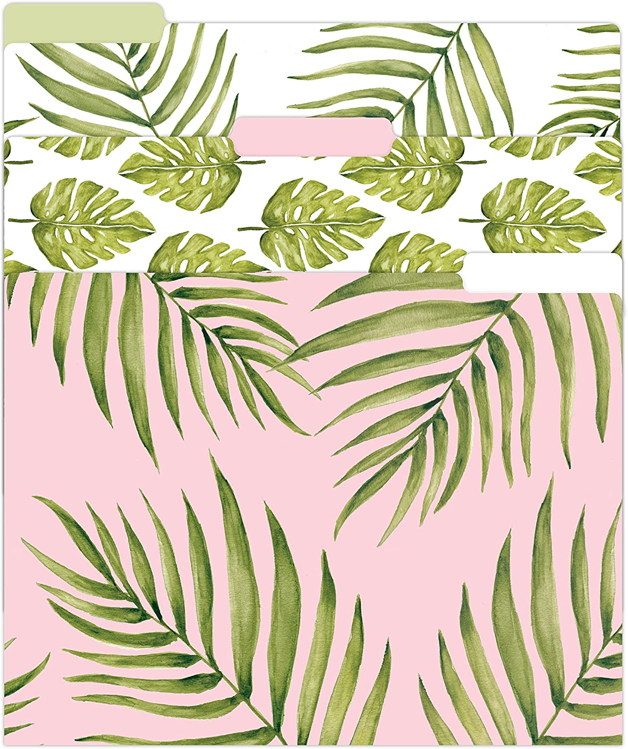 """bloom daily planners Decorative File Folders - Set of Six Letter Size (8.5"""" x 11"""") Organizers, 1/3 Cut Tabs - Assorted Designs - Palm Leaves"""