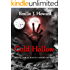 Cold Hollow (Cold Hollow Mysteries Book 1)