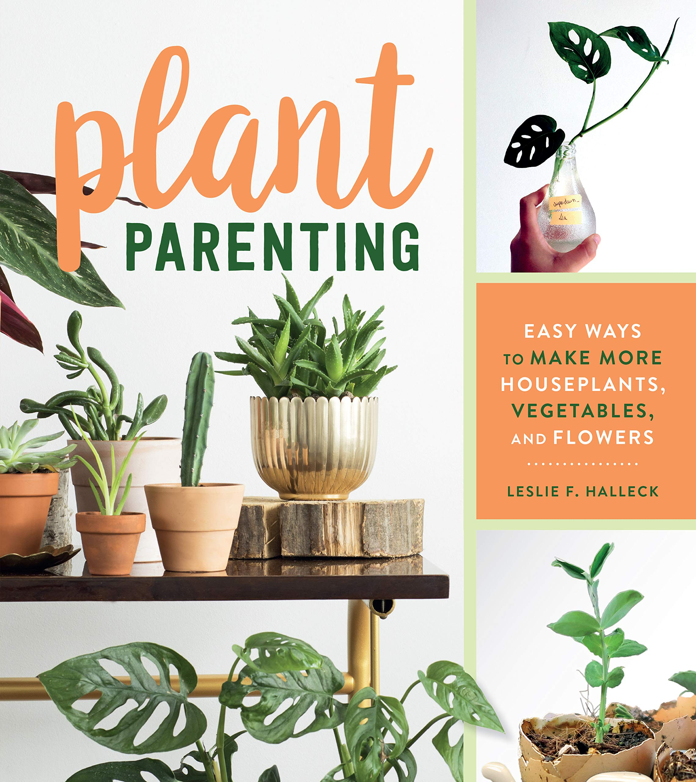 Plant Parenting: Easy Ways to Make More Houseplants, Vegetables, and Flowers by Timber Press